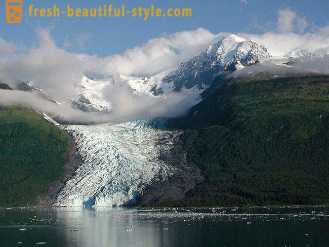 Glacier Bay National Park i Alaska